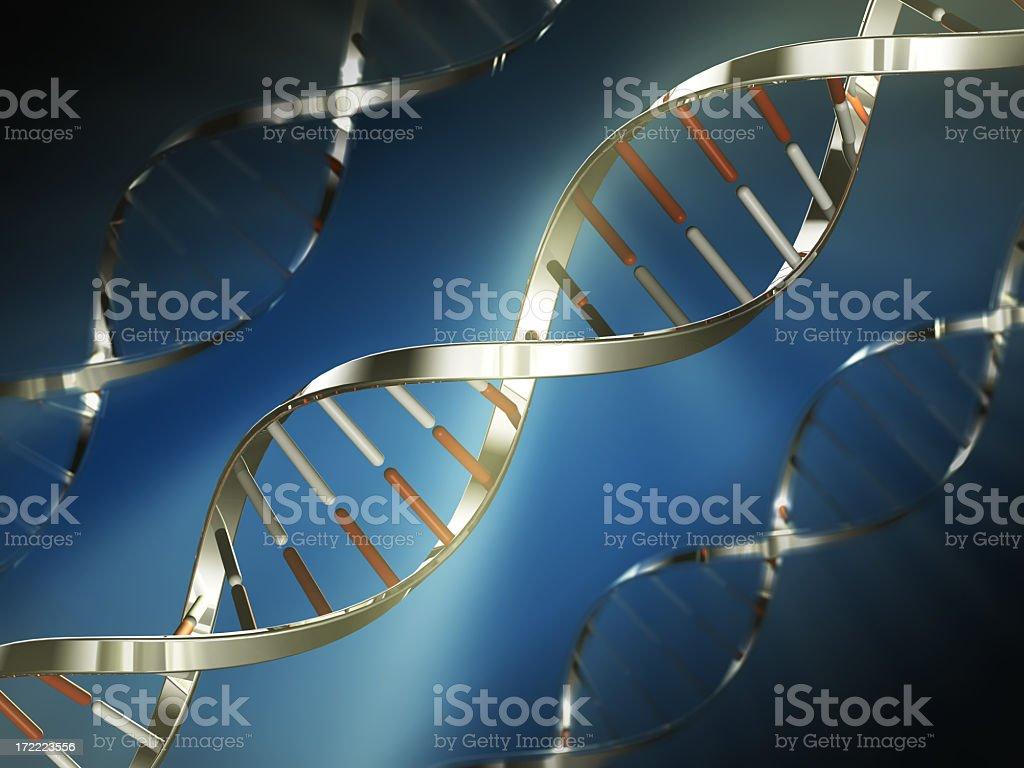 Metallic DNA strand model image stock photo
