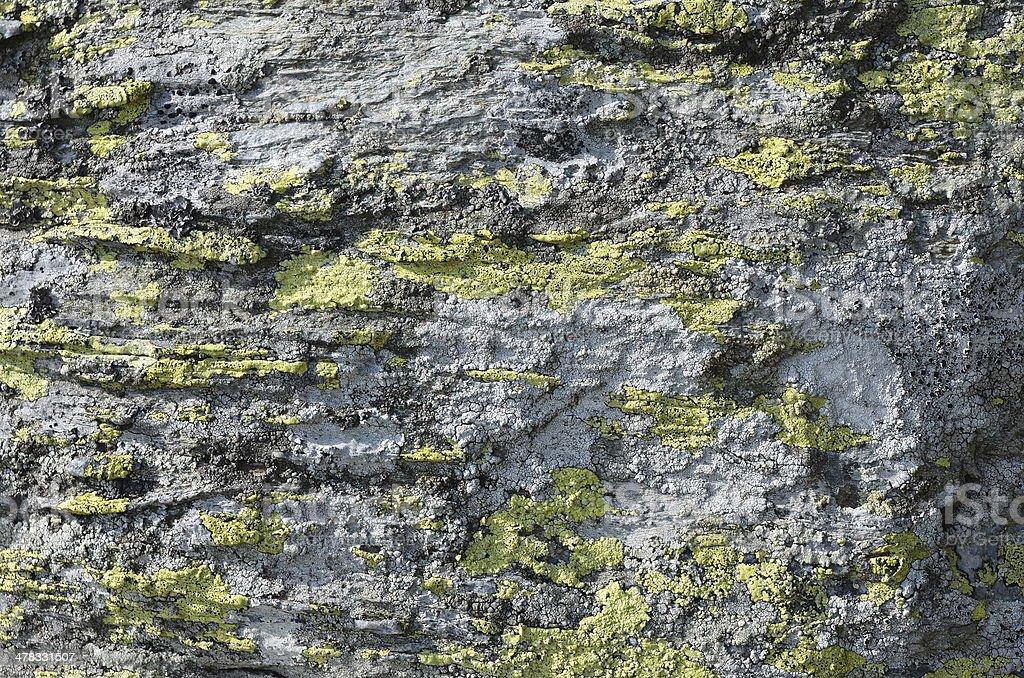 Metamorphic rocks background royalty-free stock photo