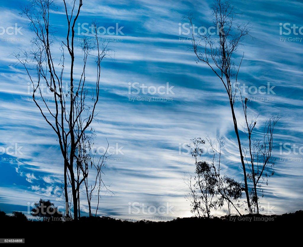 Meteorology hooked Cirrus spissatus and uncinus cloud types stock photo