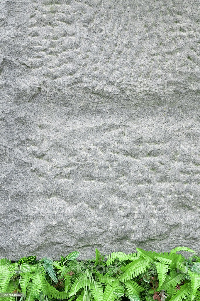 metope of the rough stock photo