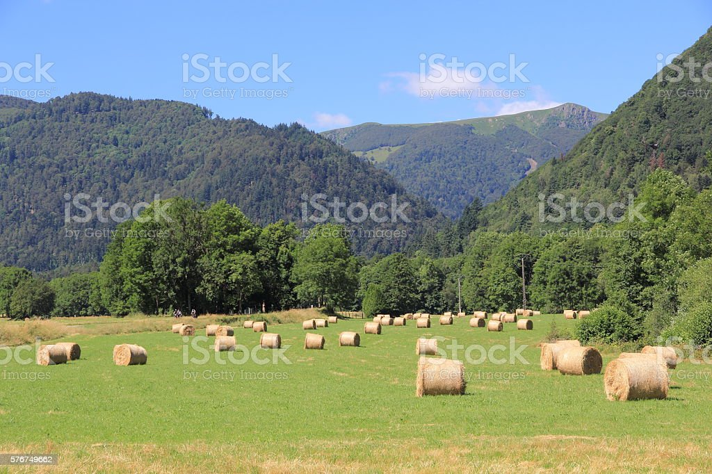 Metzeral valley in Alsace stock photo