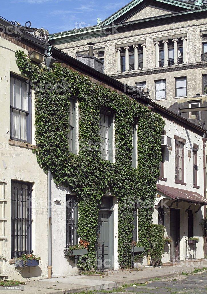 Mew House Covered In Ivy, New York City royalty-free stock photo