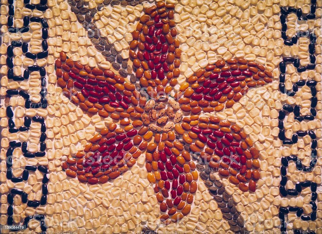 Flor mexicano del frijol foto de stock libre de derechos