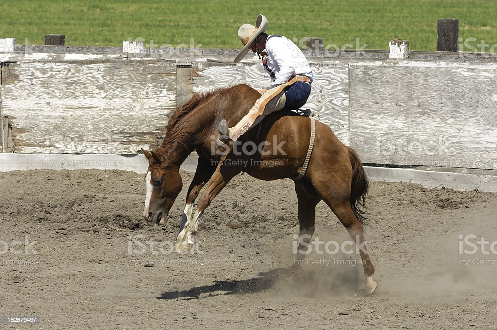 Mexican Cowboy Bronco Riding in Rural Rodeo Arena stock photo