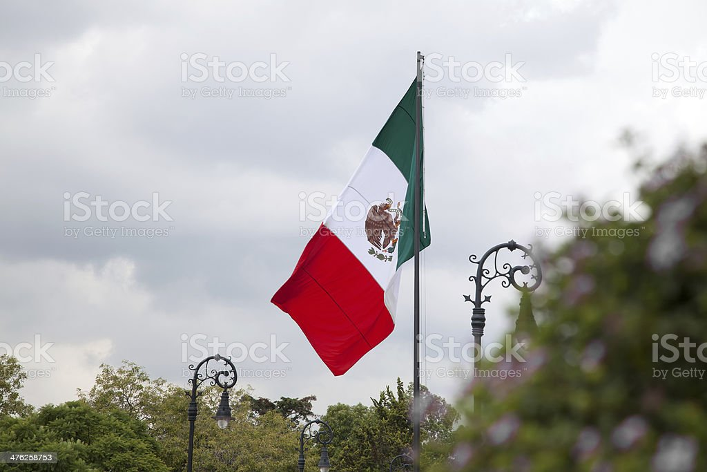 Mexican Flag in a park royalty-free stock photo
