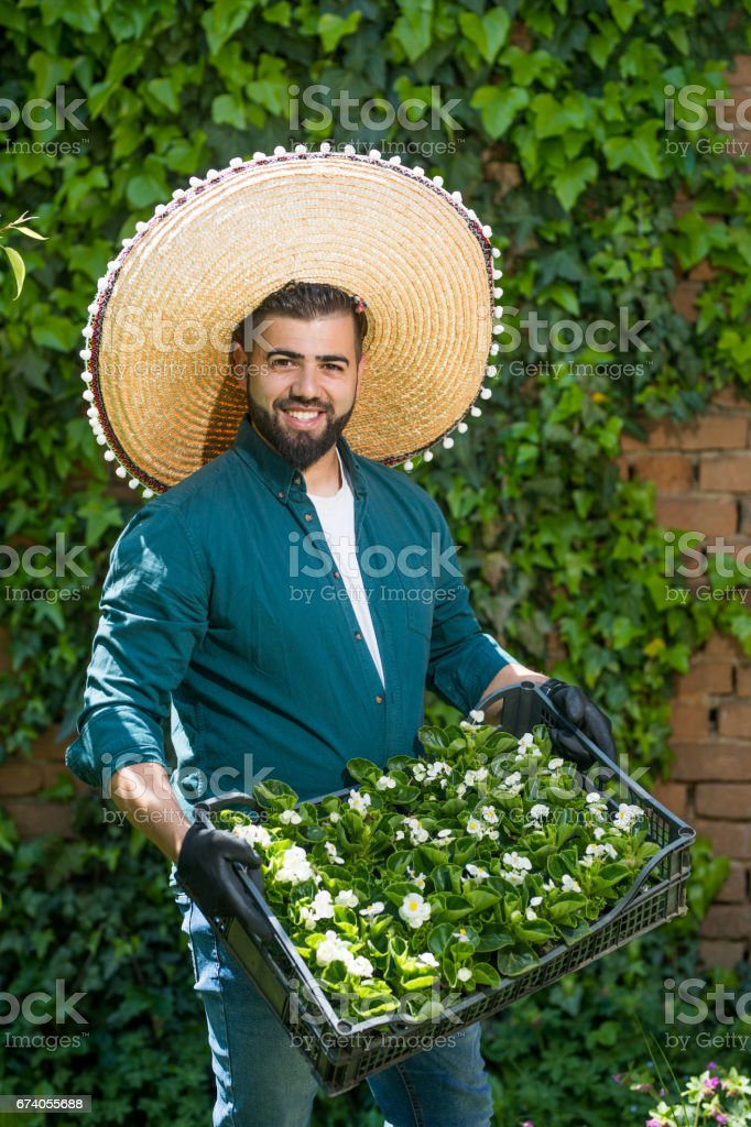 mexican gardener royalty free stock photo