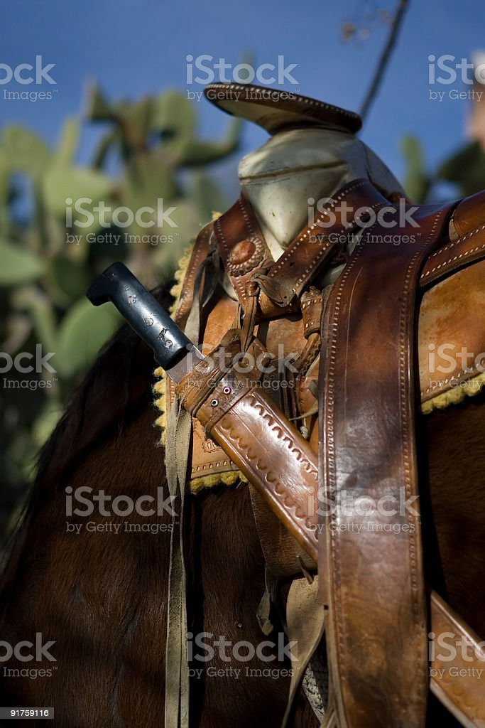 Mexican Saddle Detail stock photo