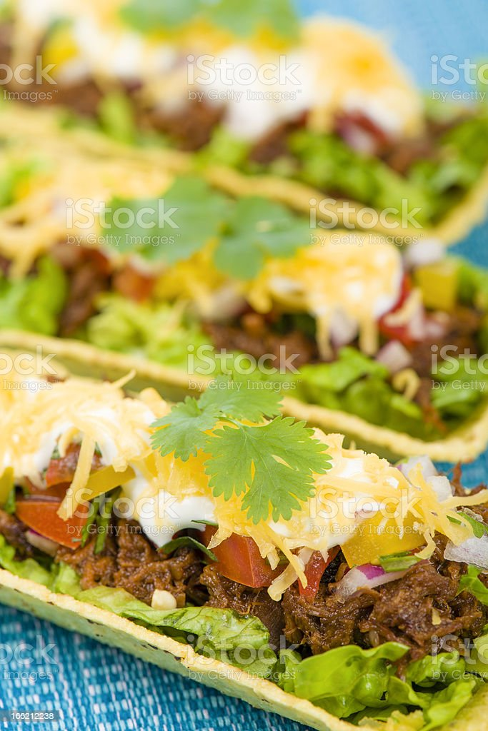 Mexican Shredded Beef Taco Trays stock photo