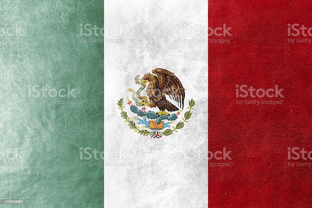 Mexico Flag painted on leather texture stock photo