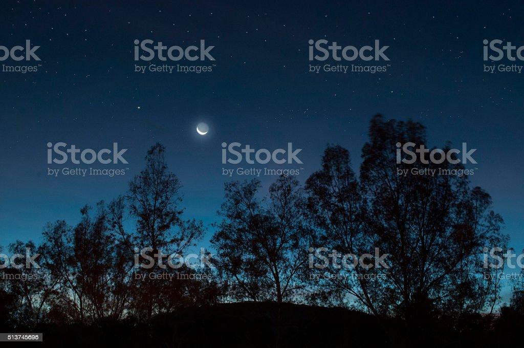 Mexico, Jalisco, Gdl, Metropolitan park, Silhouettes night stock photo