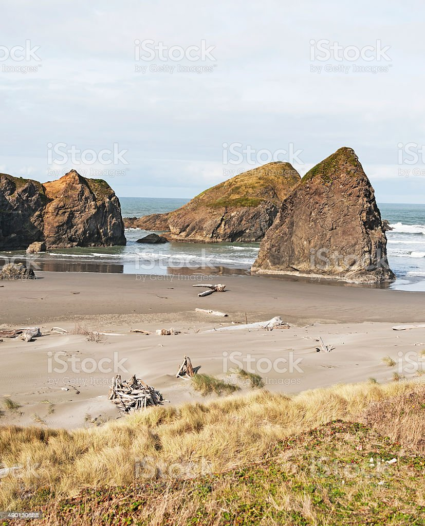 Meyers Creek Beach with Driftwood in Oregon stock photo