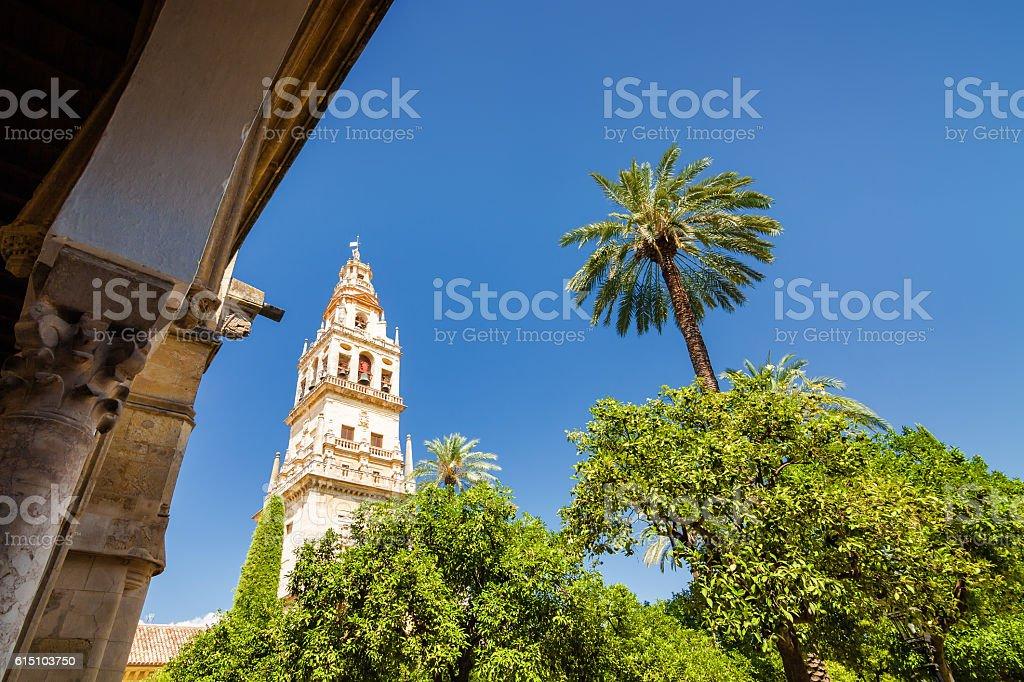 Mezquita. Cordoba, Andalusia province, Spain. stock photo