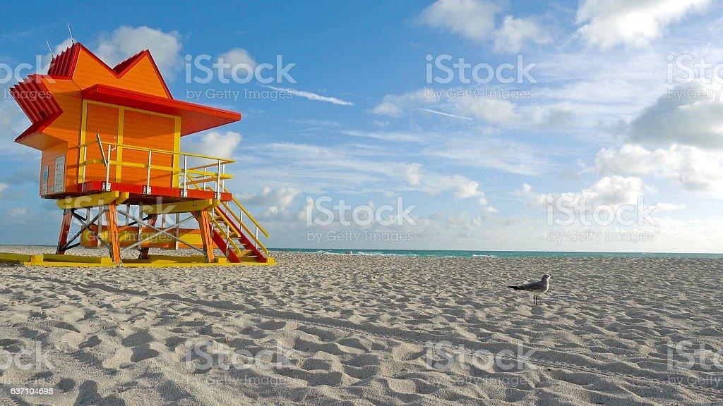 Miami Beach Florida Lifeguard Tower Seagull Sandy Tropical Scene stock photo