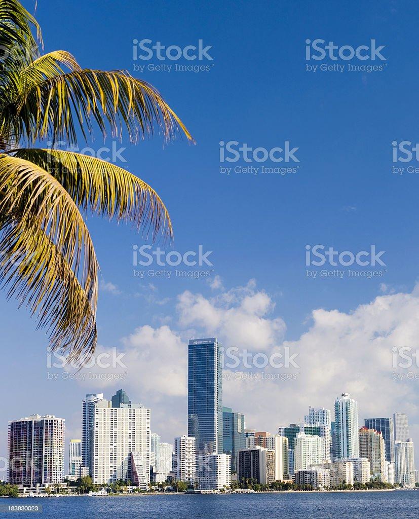 Miami Brickell City Skyline Florida USA royalty-free stock photo