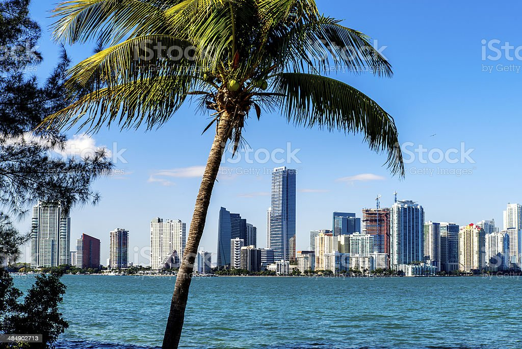 Miami Downtown skyline stock photo
