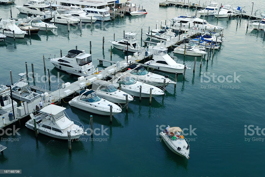miami marina royalty-free stock photo