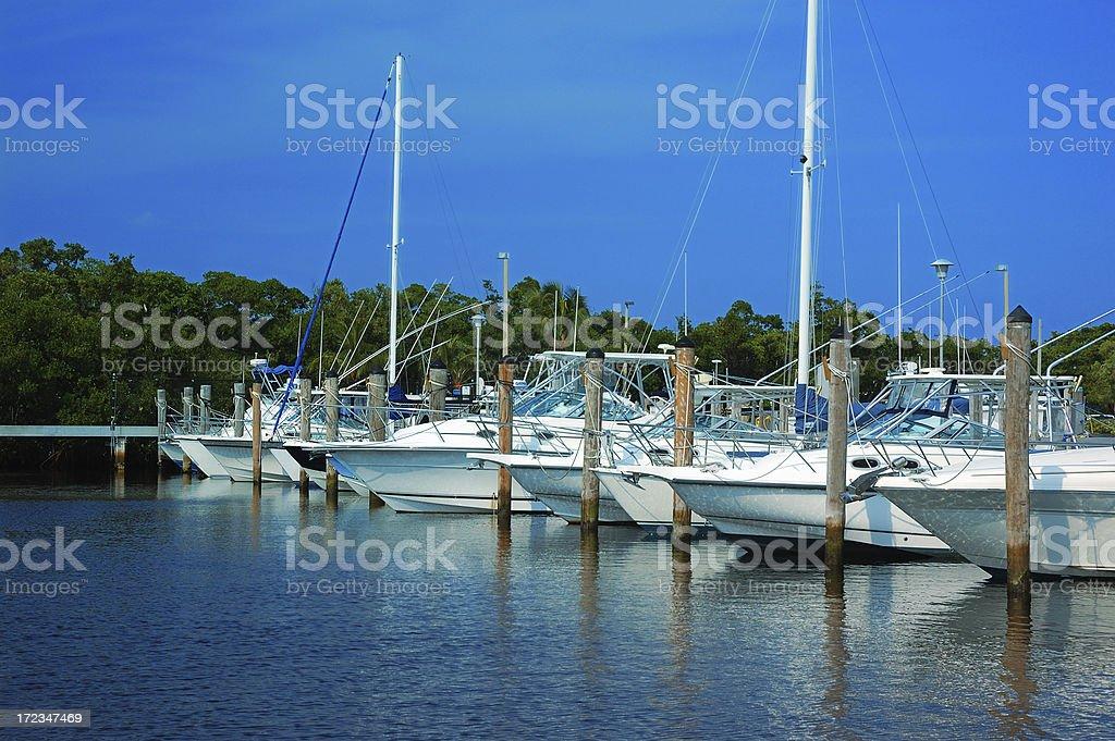 miami marina with docked boats royalty-free stock photo