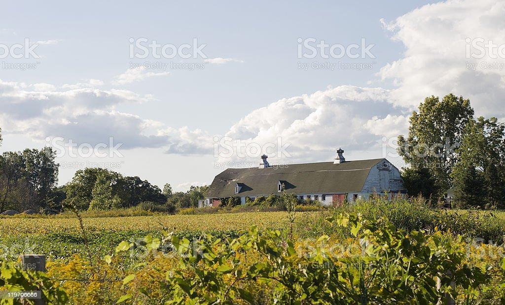 Michigan Farm stock photo