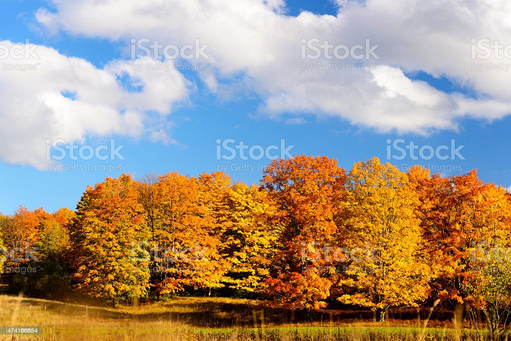 Michigan - Peak Fall Colors stock photo