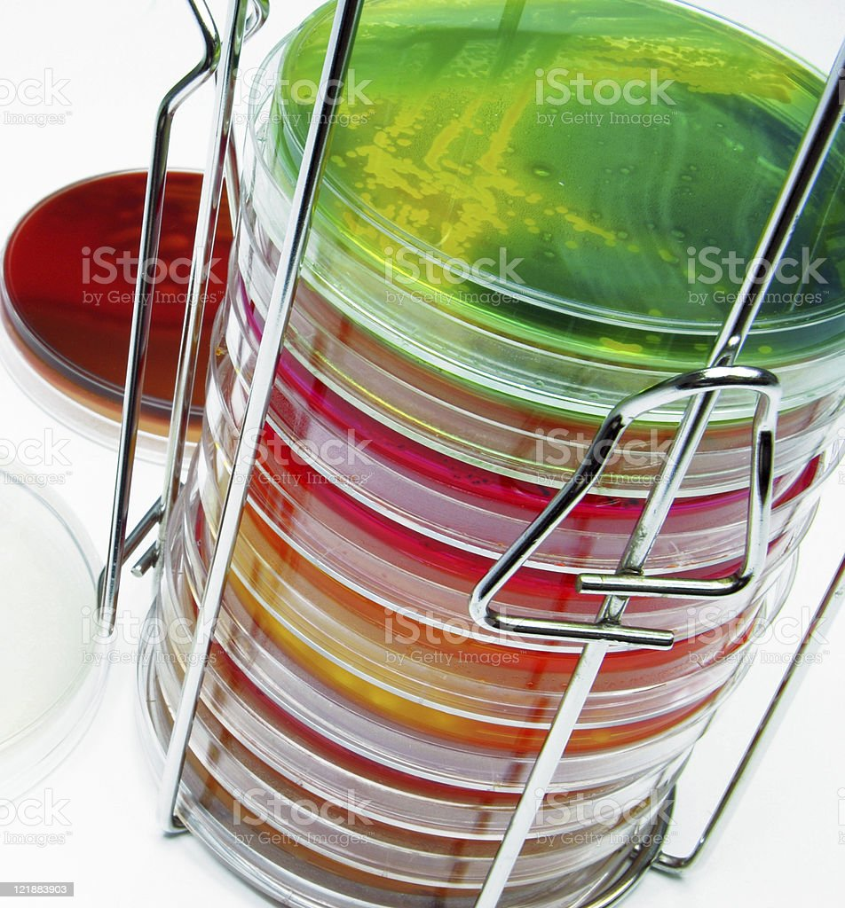Microbiology: A stack of colourful bacterial culture plates royalty-free stock photo