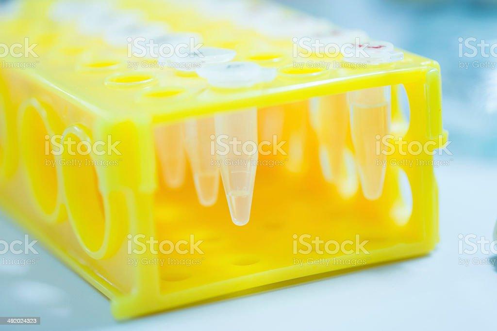 Microcentrifuge Tube stock photo