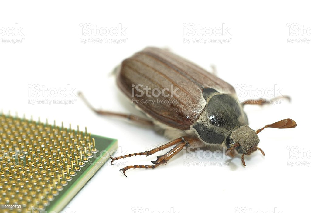 Microchip bug royalty-free stock photo