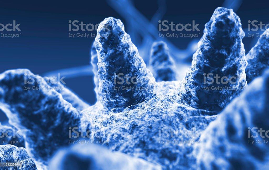 Microcosm. Microbe royalty-free stock photo