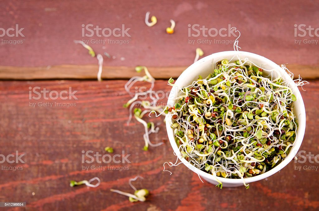 Microgreens assortment in paper cup. Healthy Green Salad with fresh stock photo