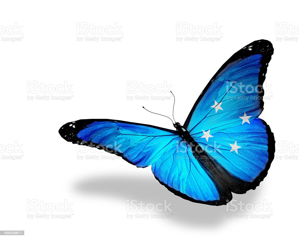 Micronesia flag butterfly flying, isolated on white background stock photo