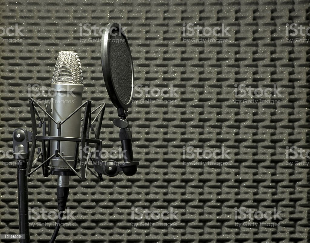 Microphone in Acoustic Booth stock photo