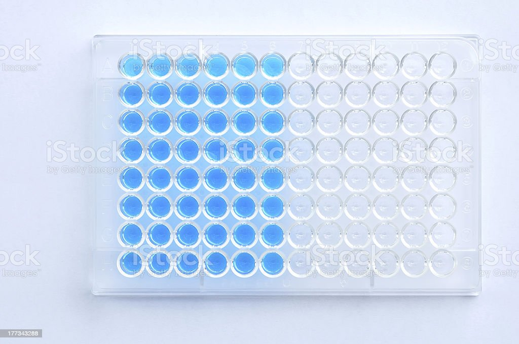Microplate with solution stock photo