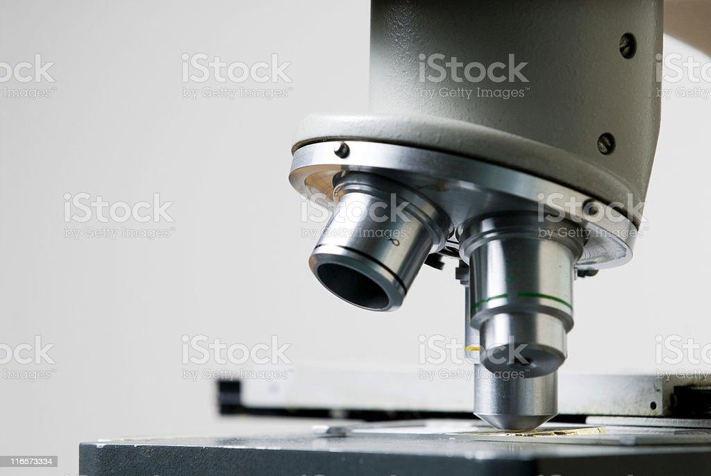 Microscope Macro 2 royalty-free stock photo