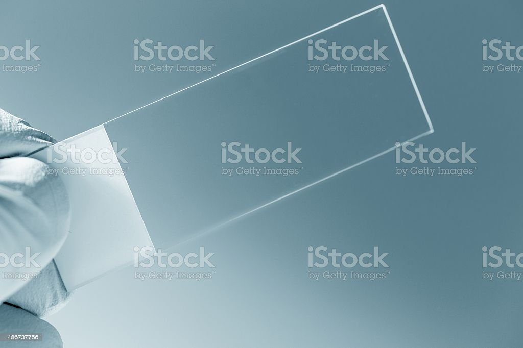 microscope slide in hand stock photo