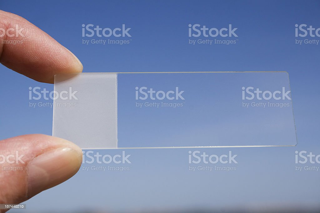 Microscope slide royalty-free stock photo