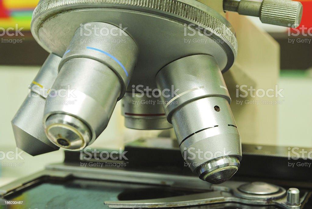 Microscope Slide royalty-free stock photo
