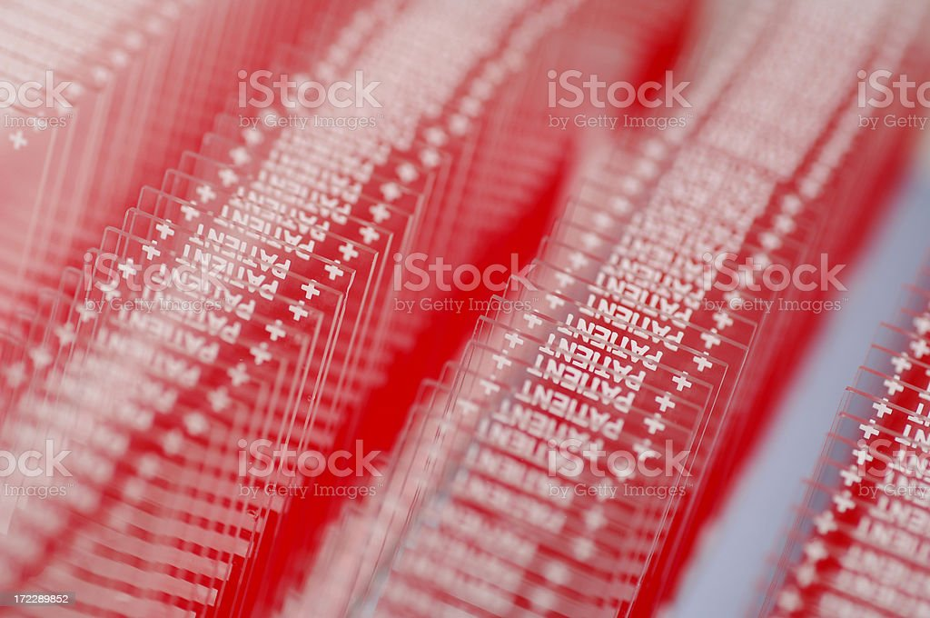 Microscope slides with blood samples royalty-free stock photo
