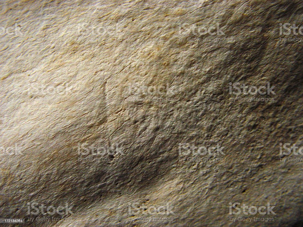 Microscopic close-up of a bone royalty-free stock photo