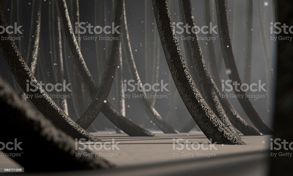 Microscopic Hair Fibers stock photo