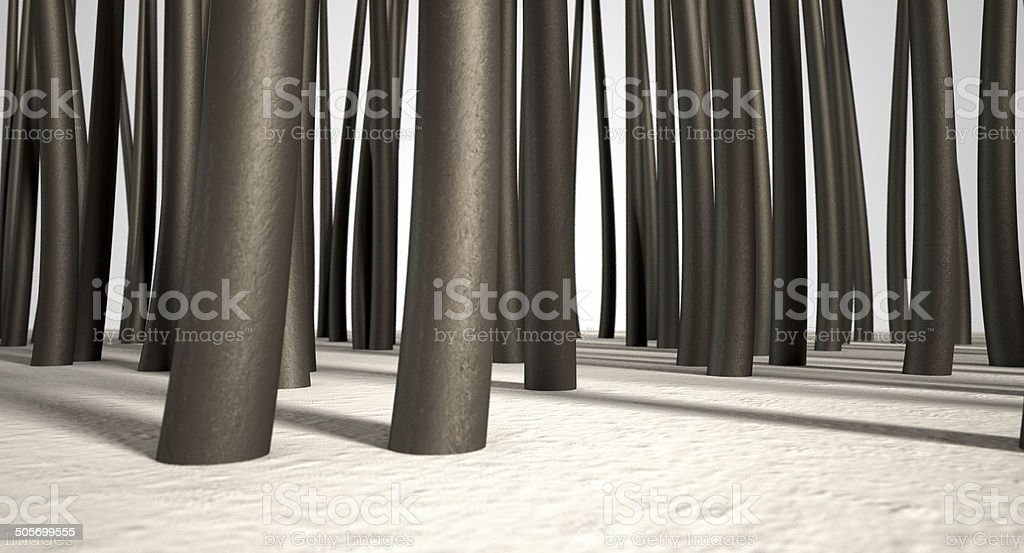 Microscopic Hair Roots stock photo