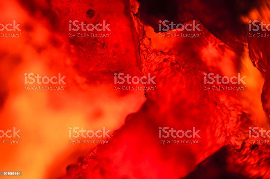 Microscopic image of cramberry fruit stock photo