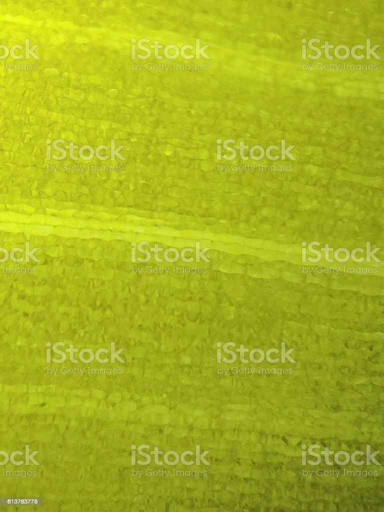 microscopic view of the leaf surface showing plant cells stock photo