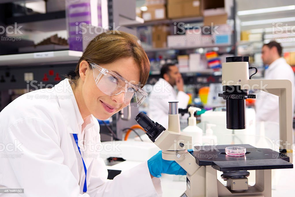 Microscopist at work stock photo