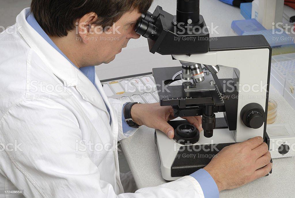 Microscopy royalty-free stock photo