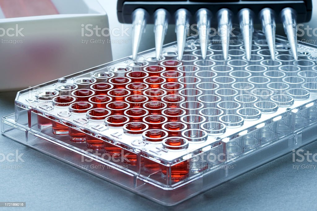 microwell plate stock photo