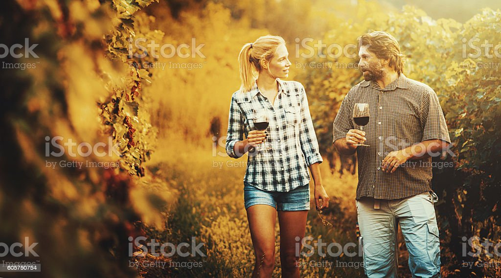 Mid adult couple walking through a vineyard. stock photo