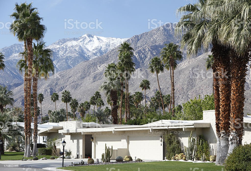 Mid Century Modernism With Palm Trees And Snow stock photo