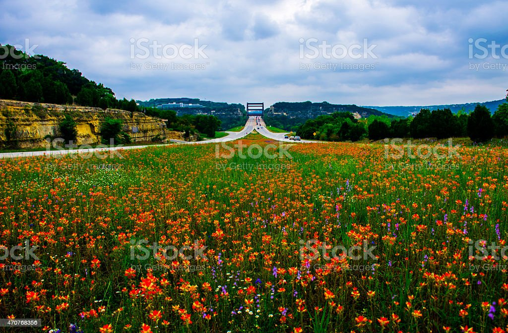 Middle 360 Bridge Pennybacker Bridge Wildflowers stock photo