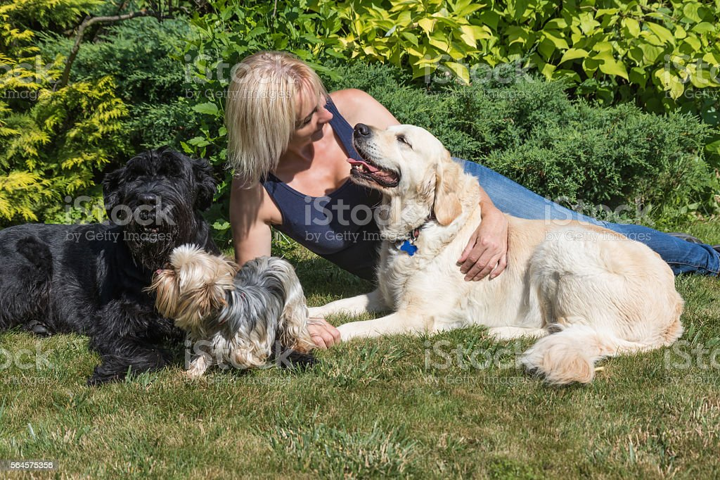 Middle age woman with dogs on the lawn stock photo