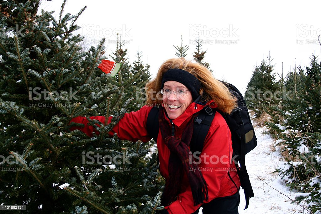 Middle aged woman at Christmas tree farm stock photo