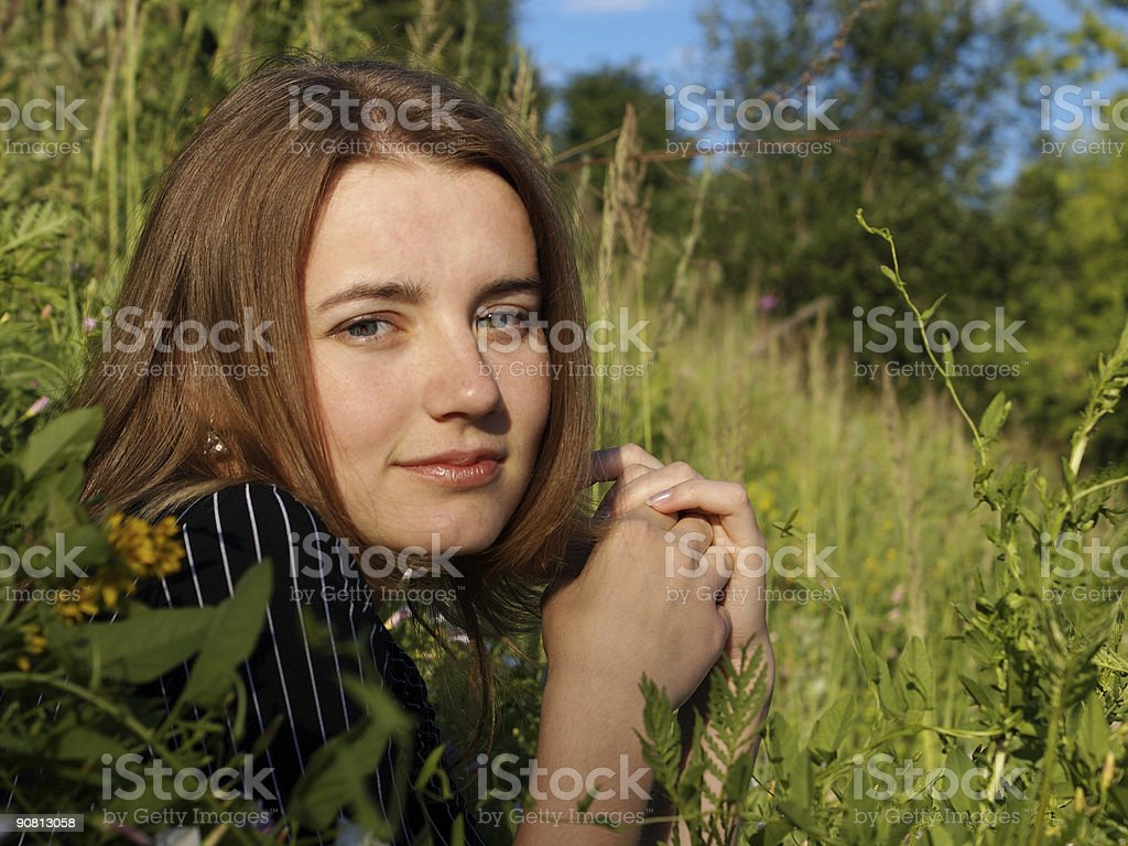 Middle of summer grass royalty-free stock photo